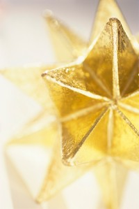 Close-up of Gold Star