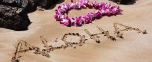 aloha image