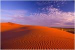 Deep Red sand dunes of the Strzelecki Desert in outback South Australia.