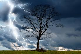 brewing-storm-with-lightening-and-tree